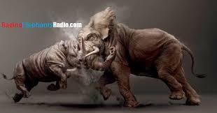 VIDEO: Raging Elephants Radio — #RULE44 JAMES DICKEY TARGETS STRAUS